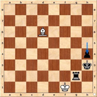 wiesbadener schachverein